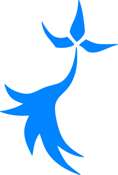 Les Bleuets du Léon